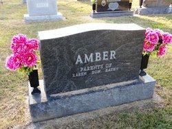 Robert J. Amber