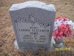 Carrie Elizabeth Sims