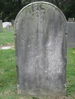Elisabeth M Gibbs