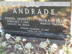 Daniel Honey Andrade
