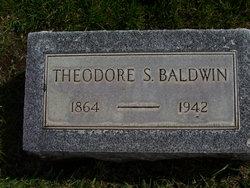 Theodore S Baldwin