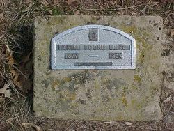 Daniel Boone Ellis