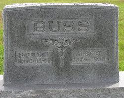 Albert William Buss