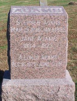 Samantha Jane <i>Harrison</i> Adams