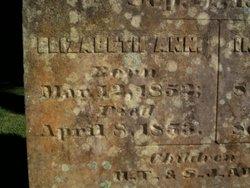 Elizabeth Ann Adams