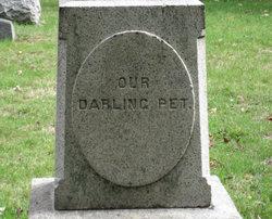 Darling Pet