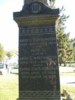 Alice L Worthington