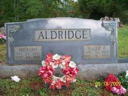 Hollie <i>Crisp</i> Aldridge