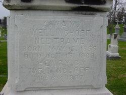 Anna <i>Trame</i> Wellinghoff