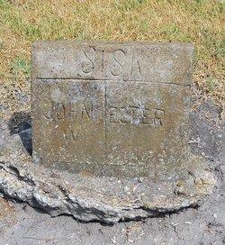 Ester Ann Elizabeth <i>Hill</i> Sisk