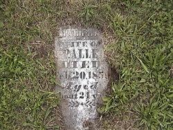 Martha Ann Polly <i>Bartlett</i> Allee