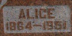 Alice <i>Holder</i> Brackett