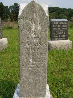 Rev John Hughes Bobbitt