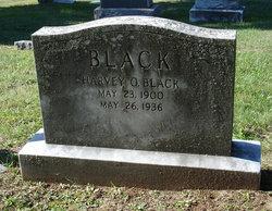 Harvey Origen Black