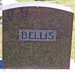 David B. Bellis