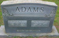 Rosa F <i>McLeod</i> Adams