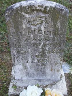 Lewis Tiffin L T Higgins