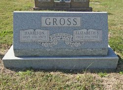 Elizabeth S Gross