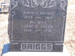 Jane A. <i>Shear</i> Briggs