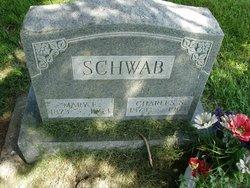 Charles S Schwab, Sr
