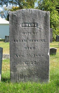 Chloe Hawkins