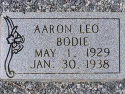 Aaron Leo Bodie