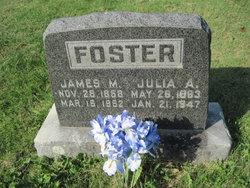 Julia Ann <i>Blankenship</i> Foster