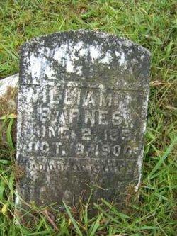 William Martin Barnes