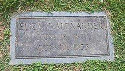 Eliza Jane <i>Williams</i> Alexander
