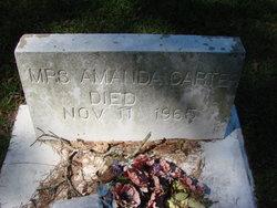 Amanda Carter