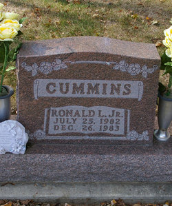 Ronald L. Cummins, Jr