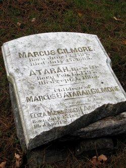 Marcus Gilmore