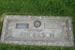 Martin Albiston Anderson