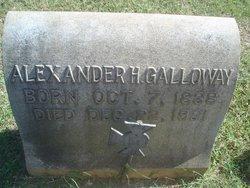 Alexander H Galloway