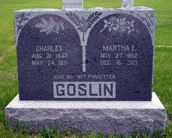 Charles A Goslin