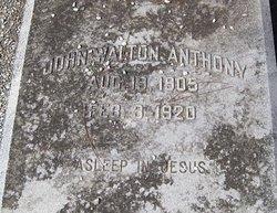 John Walton Anthony