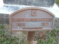 Rainey Baynes Morgan
