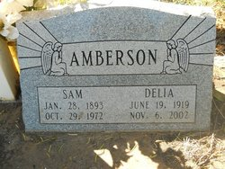 Delia <i>Rodriguez</i> Amberson