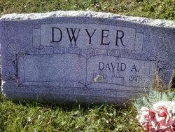 David A. Dwyer
