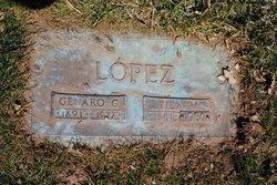 Domatila <i>Martin</i> Lopez
