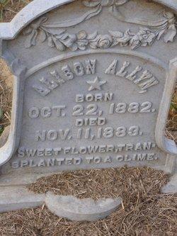 Alison Allyn