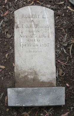 Robert E Downing