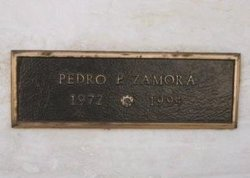 Pedro Pablo Zamora