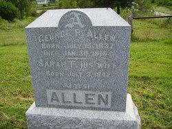 Sarah F Allen