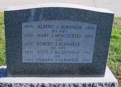 Albert J Albanese