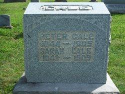 Peter Cale