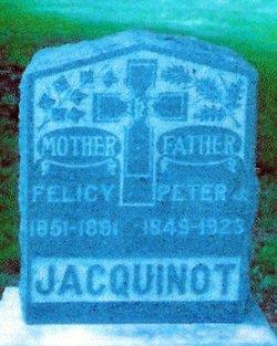 Felicy Jacquinot
