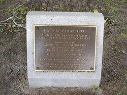 Matthis Family Cemetery