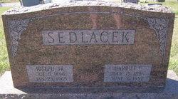Joseph Sedlacek, Jr