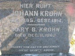 Johann John Krohn